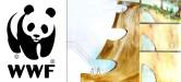 WWF op Jasmund